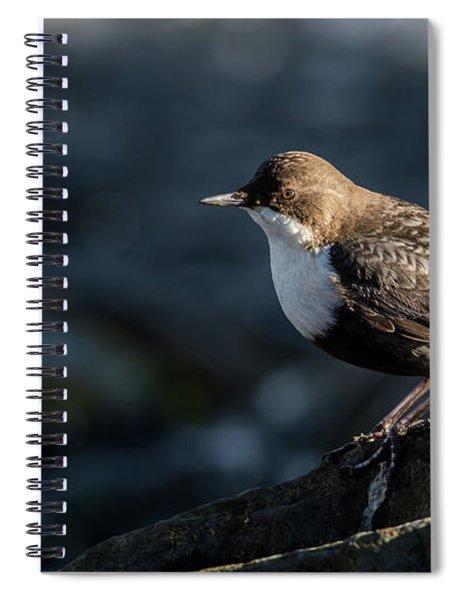 Dipper Spiral Notebook