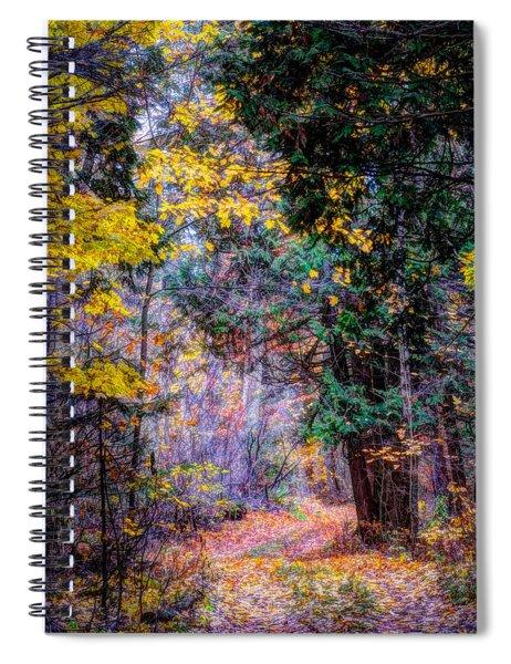 Distant Path Spiral Notebook