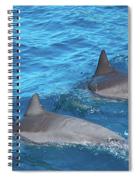 Dive On In Spiral Notebook
