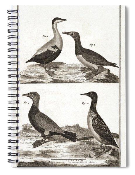 Diving Birds, Loons, Sea Ducks - Antique Engraving Spiral Notebook
