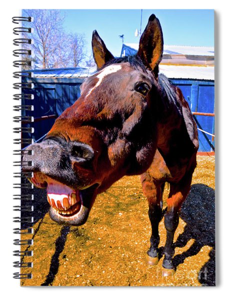 Do You Have A Treat For Me? Spiral Notebook