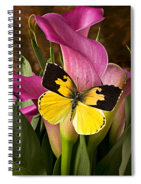Dogface Butterfly On Pink Calla Lily  Spiral Notebook