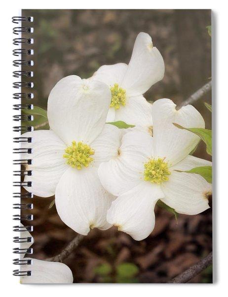 Dogwood Blossom Trio Spiral Notebook