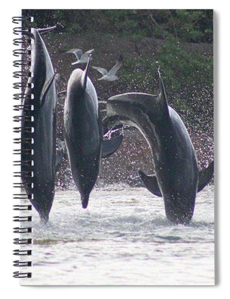 Dolphins Jump Spiral Notebook