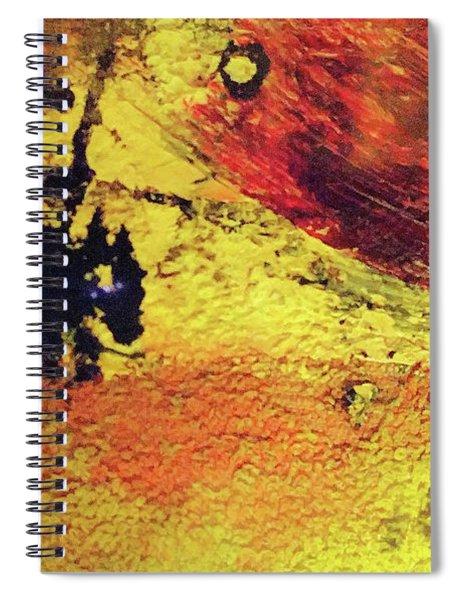 Don Quixote Man Of La Mancha Spiral Notebook