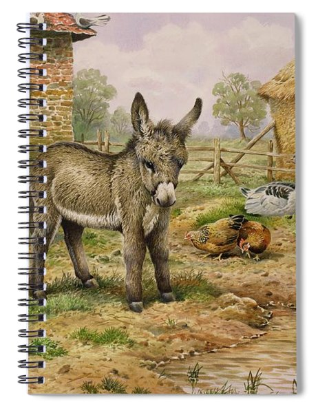Donkey And Farmyard Fowl  Spiral Notebook