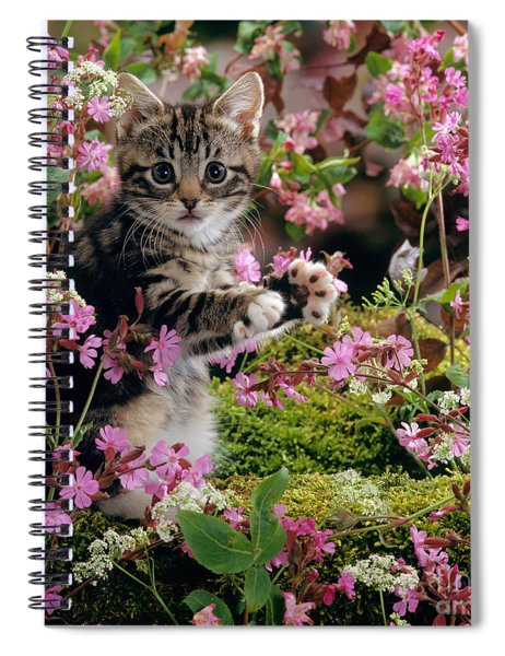 Don't Pick The Flowers Spiral Notebook
