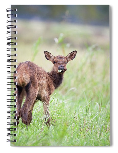 Don't Talk With Your Mouth Full. Spiral Notebook