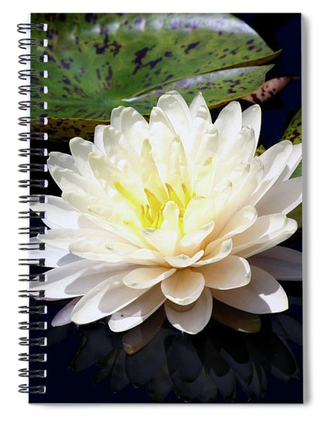 Dotty White Lotus And Lily Pads 0030 Dlw_h_2 Spiral Notebook