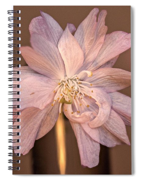 Double Pink Columbine Spiral Notebook