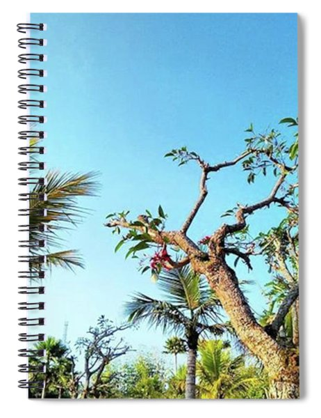 Tree And Blue Sky Spiral Notebook