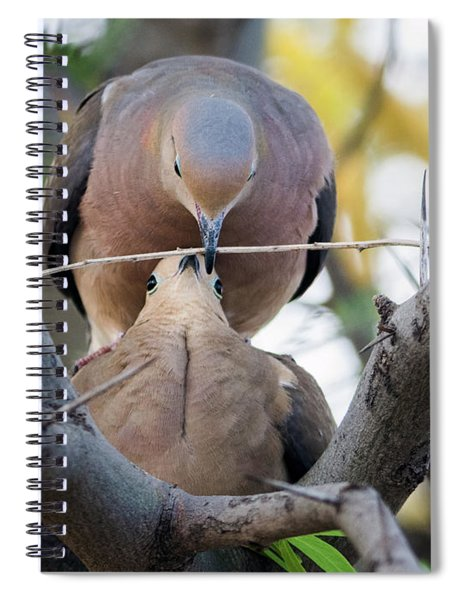 Doves Creating A Nest 7412-042618-1 Spiral Notebook