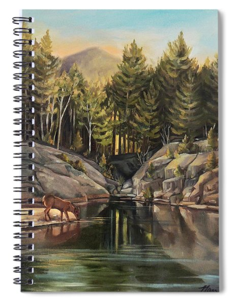Down By The Pemigewasset River Spiral Notebook