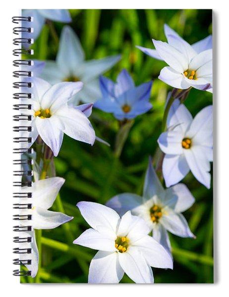 Downtown Wildflowers Spiral Notebook