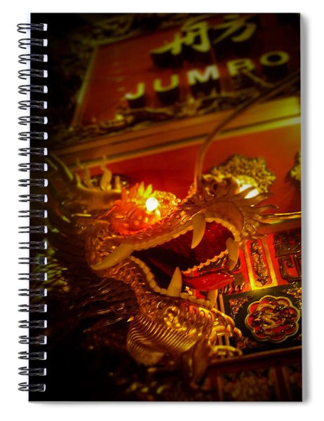 Dragon's Eye Spiral Notebook