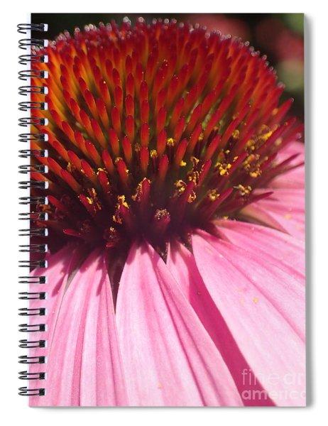 Drama Diva Spiral Notebook
