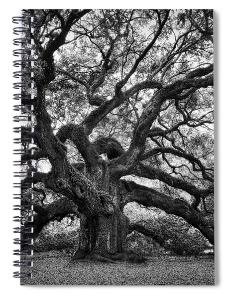 Dramatic Angel Oak In Black And White Spiral Notebook