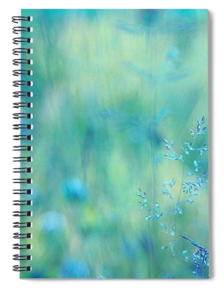 Dreamland - 02-2 Spiral Notebook
