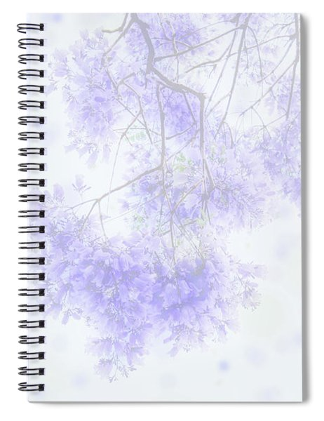Dreamy Soft Focus Jacaranda In The Spring  Spiral Notebook