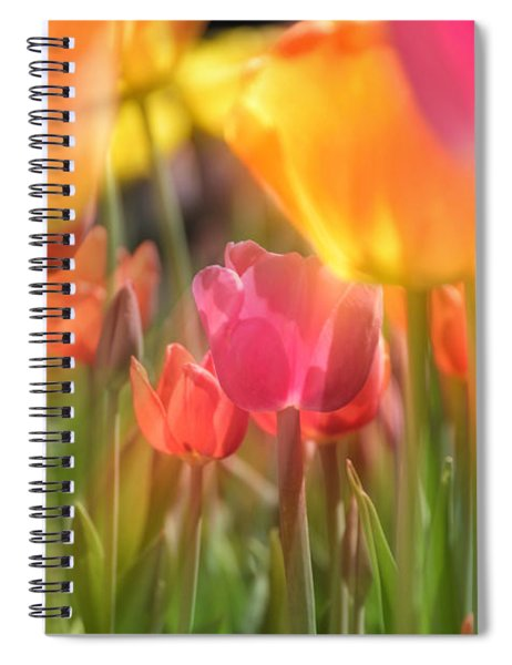 Spiral Notebook featuring the photograph Drenched In Sunlight by Andrea Platt