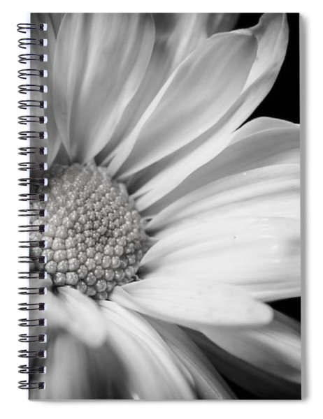 Dressed In Black And White Spiral Notebook