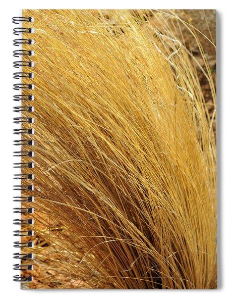 Dried Grass Spiral Notebook