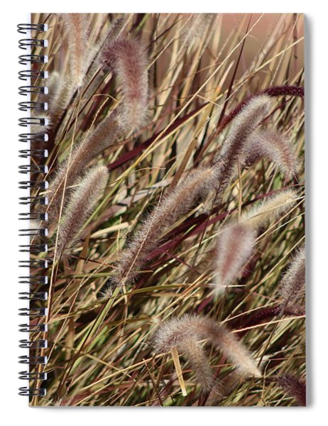 Dried Grasses In Burgundy And Toasted Wheat Spiral Notebook