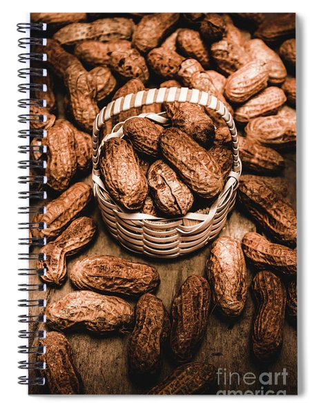 Dried Whole Peanuts In Their Seedpods Spiral Notebook