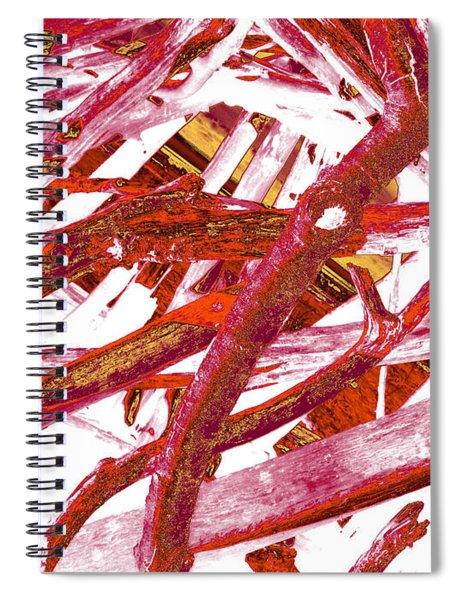 Driftwood #1 Spiral Notebook