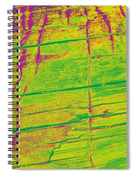 Driftwood #11 Spiral Notebook