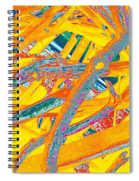 Driftwood #3 Spiral Notebook
