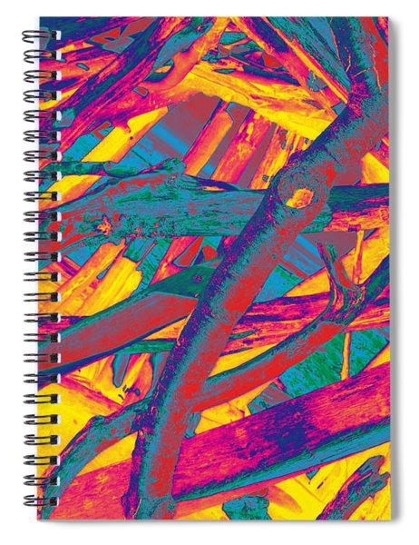 Driftwood #5 Spiral Notebook