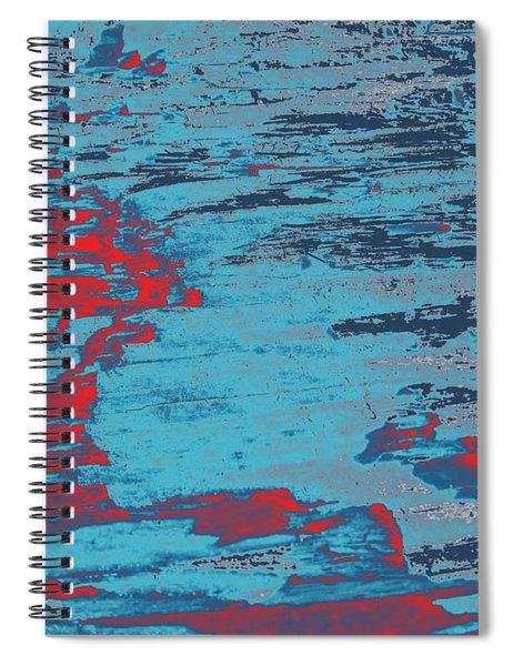 Driftwood #7 Spiral Notebook