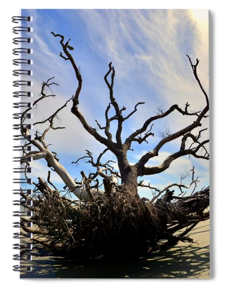 Driftwood And Roots Hunting Island Sc Spiral Notebook by Lisa Wooten