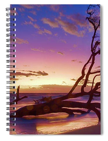 Driftwood Beach 1 Spiral Notebook
