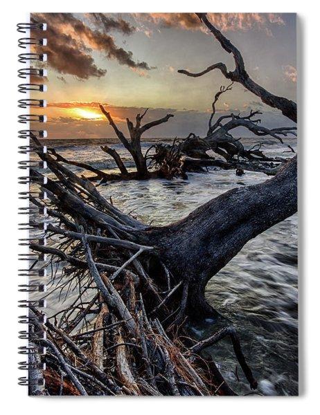Driftwood Beach 4 Spiral Notebook