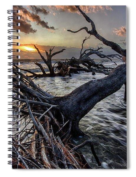 Driftwood Beach 5 Spiral Notebook