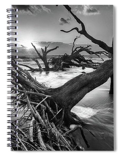 Driftwood Beach 8 Spiral Notebook
