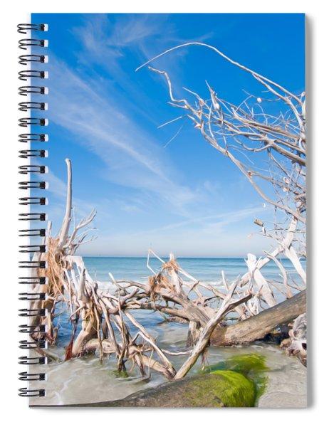 Driftwood C141348 Spiral Notebook