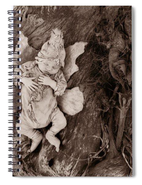 Driftwood Fairy Spiral Notebook