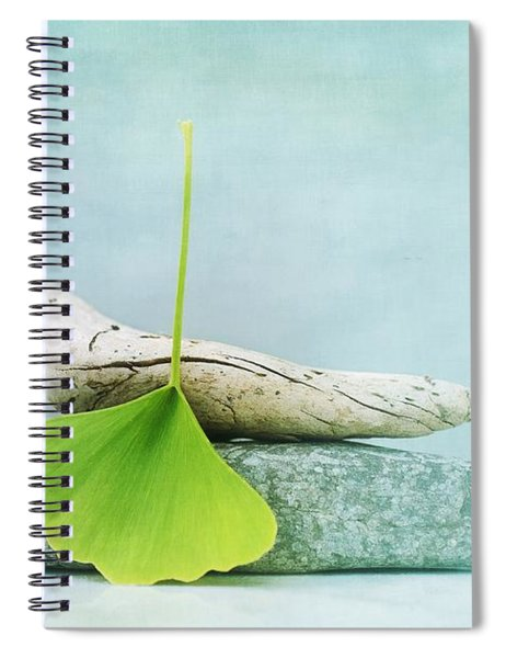 Driftwood Stones And A Gingko Leaf Spiral Notebook