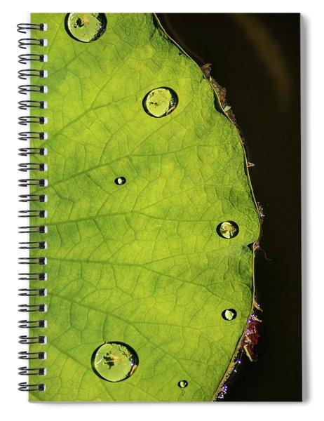 Drops Spiral Notebook