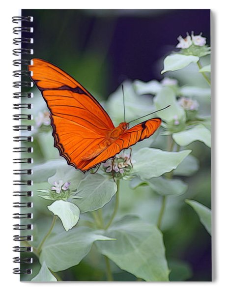 Spiral Notebook featuring the photograph Dryas Iulia by Patti Whitten