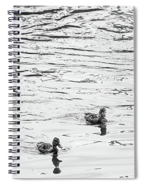 Duck And Ducklings Spiral Notebook