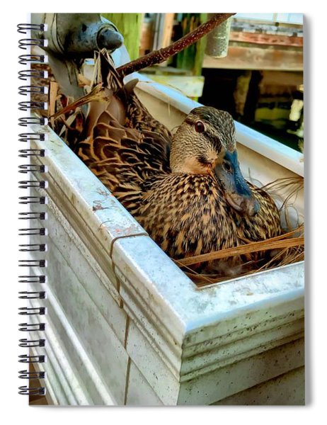 Duck On The Dock Spiral Notebook