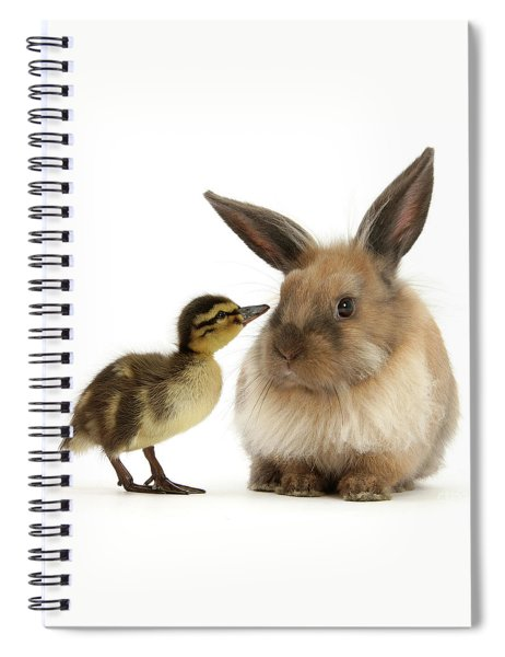 Duck Out Bunny Spiral Notebook
