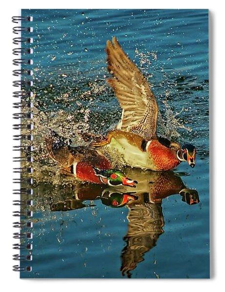 Duck Racing, Wood Ducks Spiral Notebook