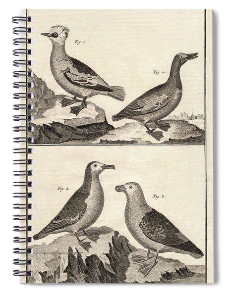 Ducks And Puffins Antique Print Spiral Notebook