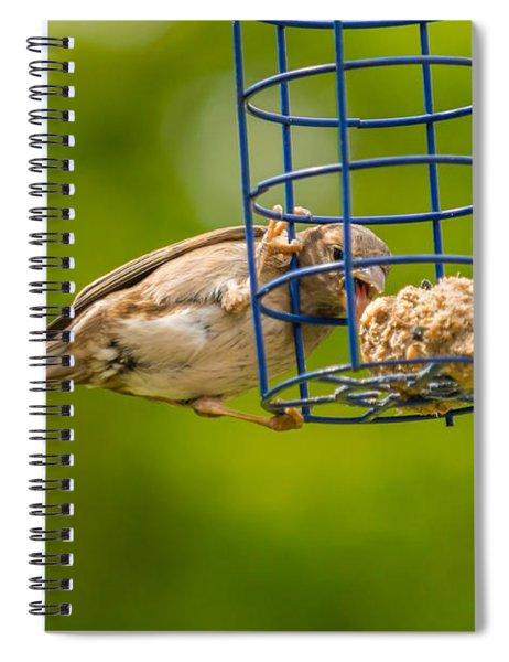 Dunnok Eating Spiral Notebook