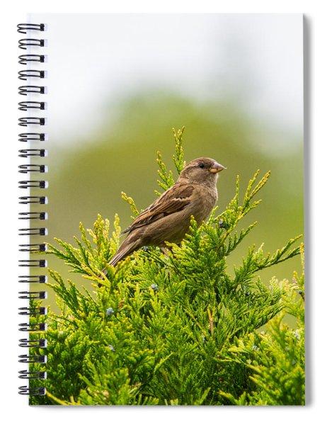 Dunnok Spiral Notebook